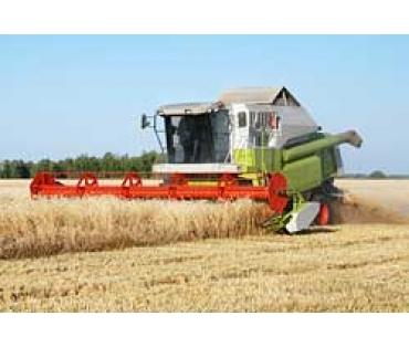 Řetězy pro zemědělství - dle tovární normy